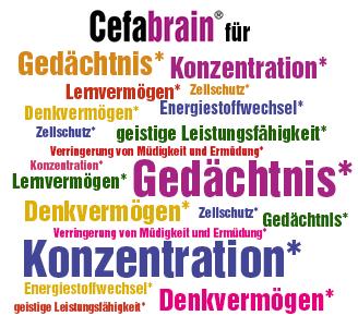 Cefabrain Wortwolke